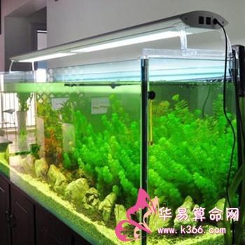 办公室鱼缸放置位置_办公室鱼缸风水公司鱼缸的摆放位置