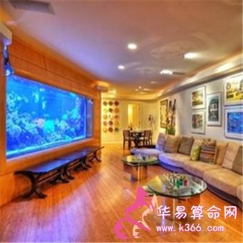 客厅里摆放鱼缸的好处