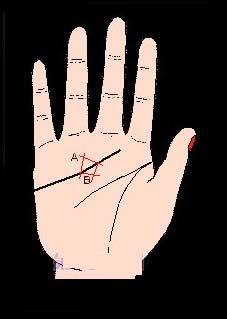 感情线,感情线图解,感情线上有三角纹