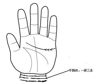 人生际遇看你的手腕线。jpg