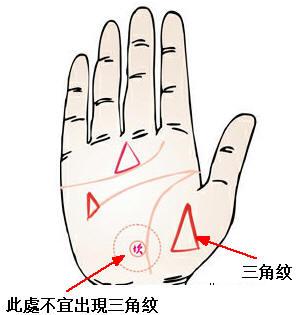 手掌杂纹看命运之三角纹