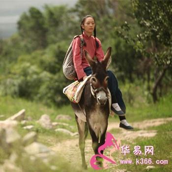 梦见骑驴 周公解梦